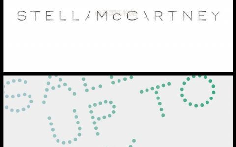 Stella McCartney 2019 Summer Sale,全部半价,老爹鞋(透明款也有)、链条包、透明包开抢!!!